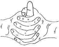 Hand mudra positions yoga Indian medicine health fitness wellbeing strength weakness strong body pranayama gestures healing mudras